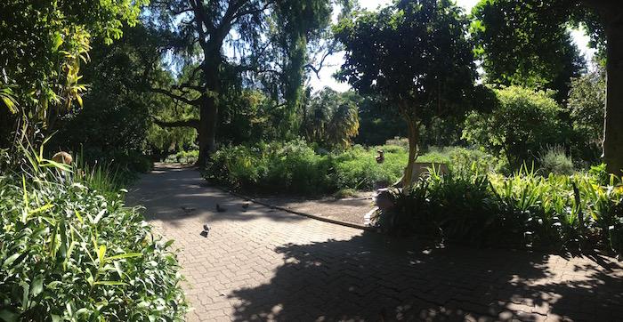 companys_gardens